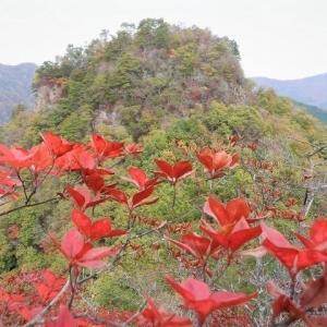 西上州(神流町) はさみ岩を越えてサスの峰へ     Mount Sasunomine in Kanna, Gunma