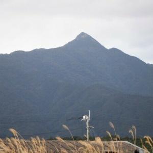 屋久島 可愛らしい名前だけど手強い愛子岳     Mount Aiko in Yakushima National Park