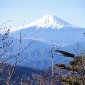奥多摩 三頭山で静かな奥多摩を味わう(後編)     Mount Mito in Chichibu Tama Kai National Park