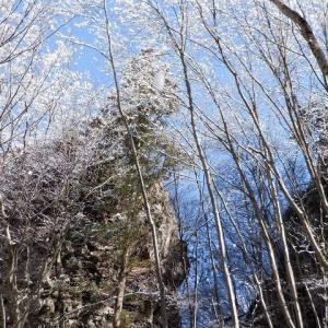 西上州(南牧村) 雪山と化した二子岩でプチアルパイン気分     Mount Futago in Nanmoku, Gunma