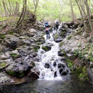 みどり市 袈裟丸山ヒライデ沢で新緑を楽しむ沢登り     Stream Climbing in Hiraidesawa, Midori, Gunma