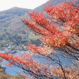 前橋市 紅葉ハイキング in 赤城山 黒檜山から鳥居峠まで歩く     Mount Akagi in Maebashi, Gunma