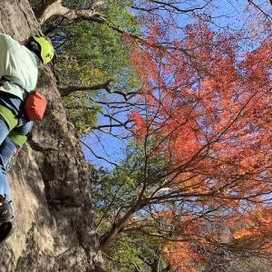 湯河原町 湯河原幕岩 【茅ヶ崎ロック・上部エリア】     Rock Climbing at Makuiwa in Yugawara, Kanagawa