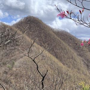 西上州(南牧村) 新緑にはまだ早かった二子岩とククリ岩     Mount Futagoiwa & Kukuriiwa in Nanmoku, Gunma