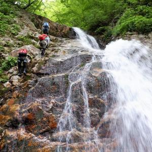 那須 緑の森に包まれた阿武隈川白水沢で沢登り     Stream Climbing in Shiramizusawa, Nikkō National Park