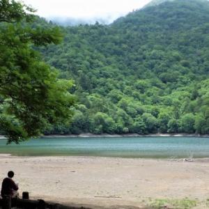 日光 奥日光散策 千手ヶ浜のクリンソウと静寂な西ノ湖    Senjyugahama & Sainoko in Nikkō National Park
