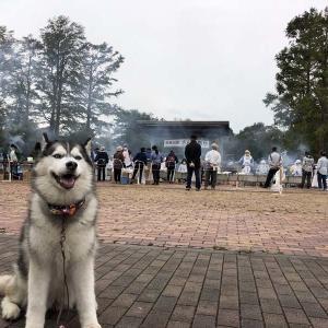 水元さんま祭り
