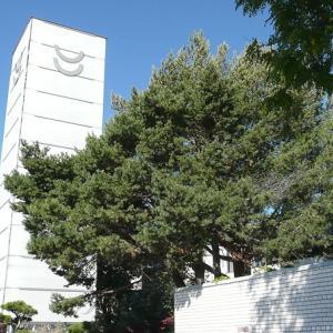 ネゲテイブ思考と日系文化会館
