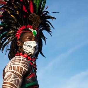 今年のカリビアンパレードは バーチャル フェスティバル。