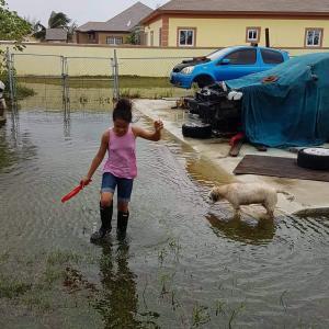 ハリケーン・ドリアン、バハマ諸島を直撃