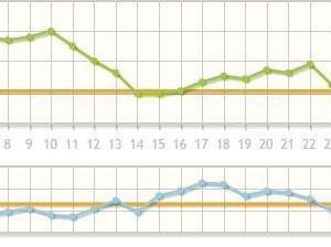 体重と体脂肪のグラフ~2019年8月・・・やっぱりロキソニンは体重が増える