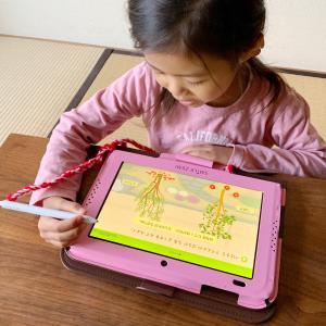 *幼児教育【タブレット学習で感じたメリット・デメリット】