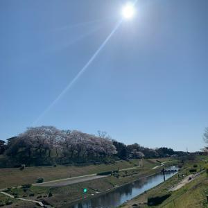 東京脱出。自然に触れて自分と向き合う時間❤️