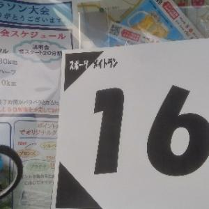 松戸江戸川河川敷マラソン大会完走報告