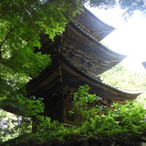 栃木・西明寺の三重塔(重要文化財)