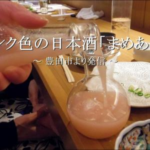 ピンク色の日本酒が置いてある小料理屋「まめあん」【豊田市】