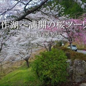 こんな時だけど奥矢作湖へ満開の「桜ツーリング」【恵那市 串原】