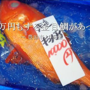 一万円!もする金目鯛が「トミーの魚や」にあった【豊田市】
