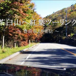 紅葉を求めて愛知の最高峰「茶臼山」へツーリング【愛知県豊根村】