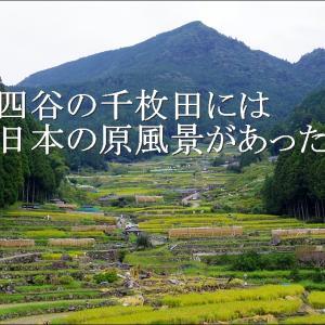 秋の「四谷の千枚田」には日本の原風景があった【愛知県 新城市】