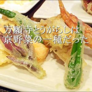 道の駅したらで買った「万願寺」とは京野菜の一種