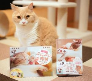 フェリシモ猫部のにゃんこのぷにぷに肉球手帳&カレンダーに採用されたニャ!