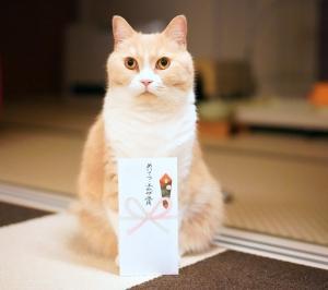 フェリシモ猫部×富士フイルム『にゃんだふるらいふ』フォトグッズ展の缶バッジが届いたニャ!