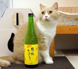 #猫と日本酒 東洋美人 六瓢息災