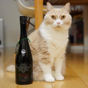 #猫と日本酒 新政 新年純米しぼりたて2021