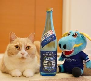 #猫と日本酒 秀よし 青い稲妻
