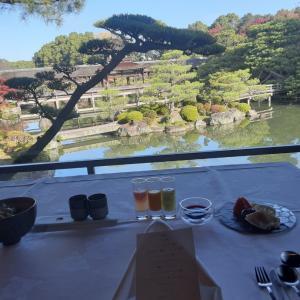 京都旅行……朝食の特別なシチュエーションに感激✨