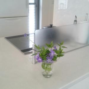 キッチンとダイニングの花に癒されて♪