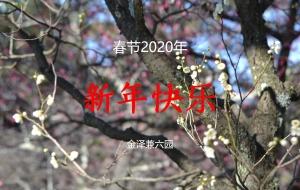春节快乐!
