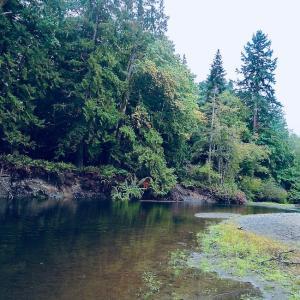 オーラのない川