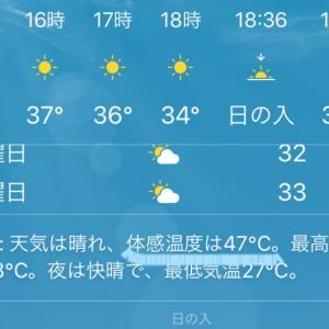47℃?!