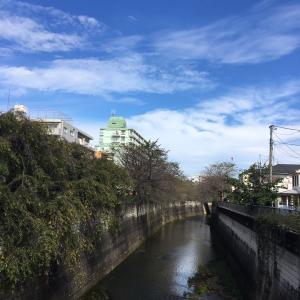 昨日は、東京へ。