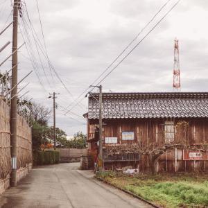 或る初冬の集落[山形県酒田市・2020/11/25]
