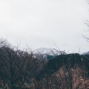 クリスタルの恋人たち[山形県最上郡真室川町・2020/12/1]