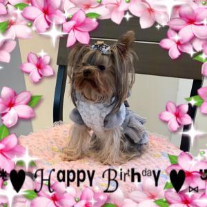 ・° ♬︎ Happy Birthday ♬ °・愛望
