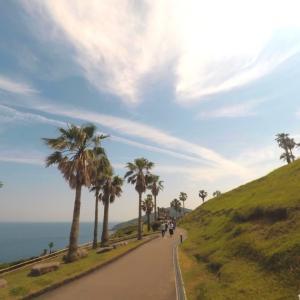 【GW九州ドライブ旅行】宮崎県 サンメッセ日南でモアイ像
