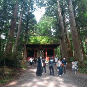 【2019夏 避暑地で過ごす】戸隠神社 奥社への参道