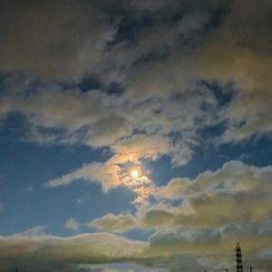 お散歩中の空の写真