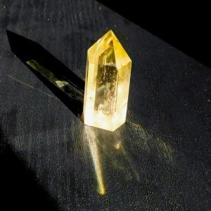 『石』との関係・・・始まりはアンモナイト