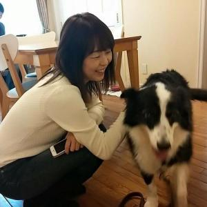 犬のパーソナルカラー診断のやり方を教えます。似合う色、服、首輪の選び方など