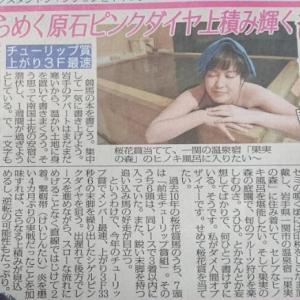 2019年 桜花賞(GI)の競馬予想(スポニチ予想コラム 井上オークス、本の印税でヒノキ風呂)
