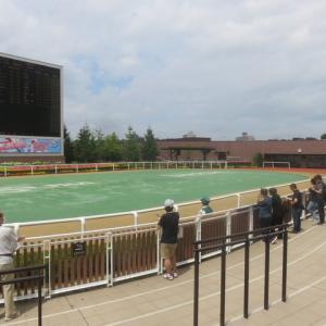 札幌競馬場 Twodays 町村農場