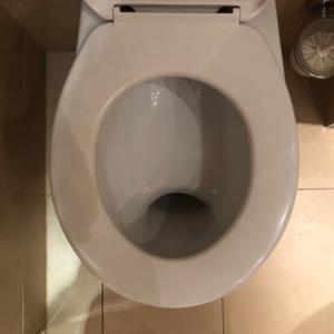健康チェックに最適なトイレ