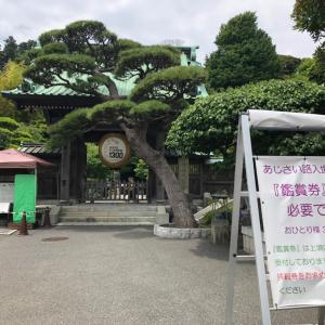 鎌倉探訪【浅羽屋本店でランチ】