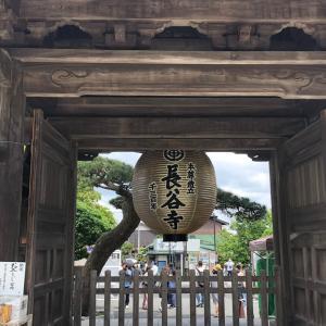 鎌倉探訪【あじさい長谷寺3】