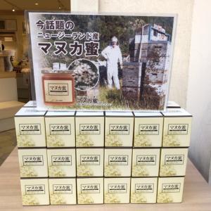 鎌倉探訪【杉養蜂園】